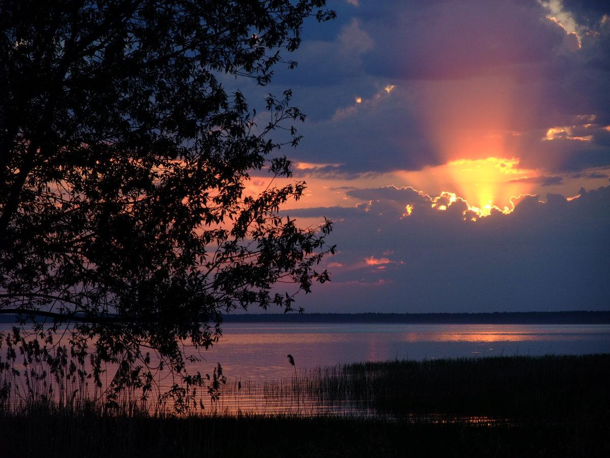 или плещеево озеро ночью фото картинки древние астрономы действительно