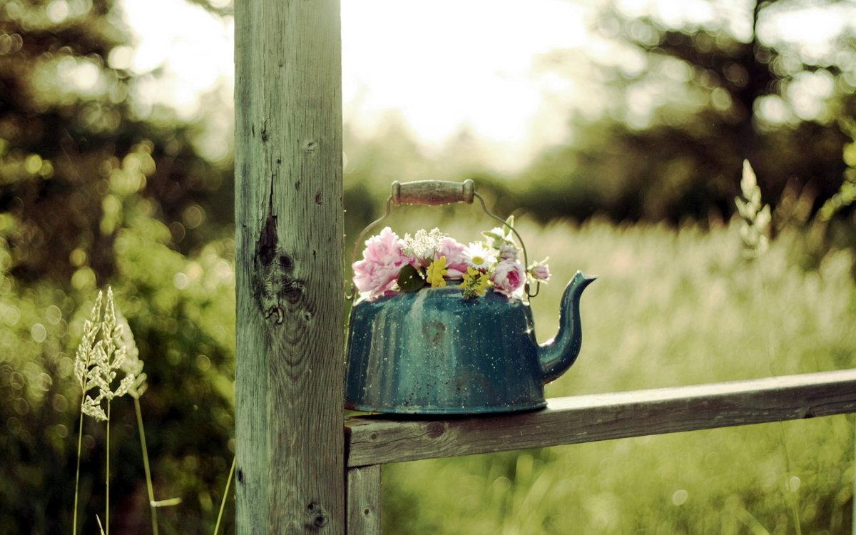 Позитивные картинки с надписями с цветами, мерзни прикольные