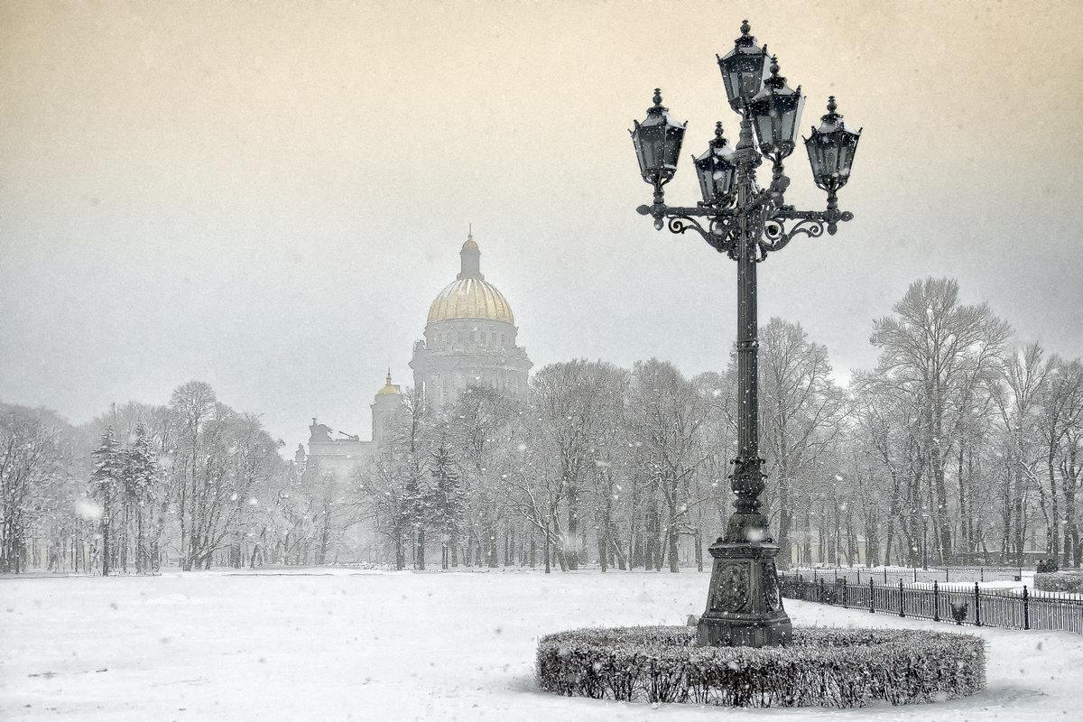гифка питер в снегу букмекера