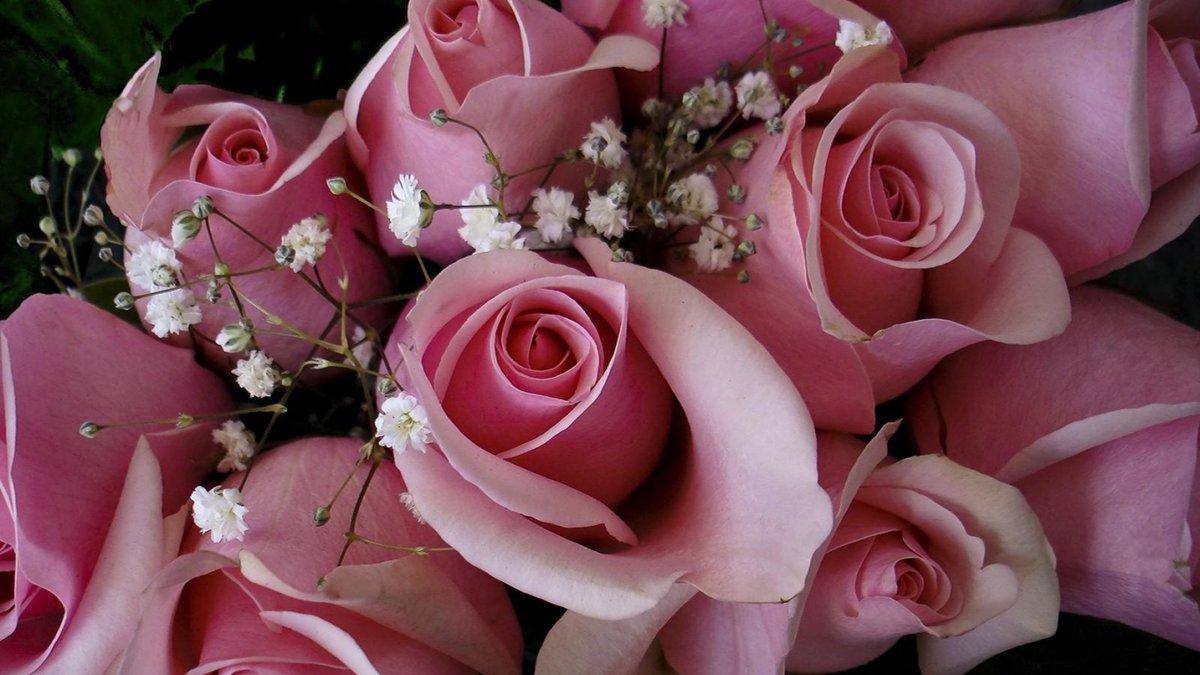 Поздравление для королевы цветов