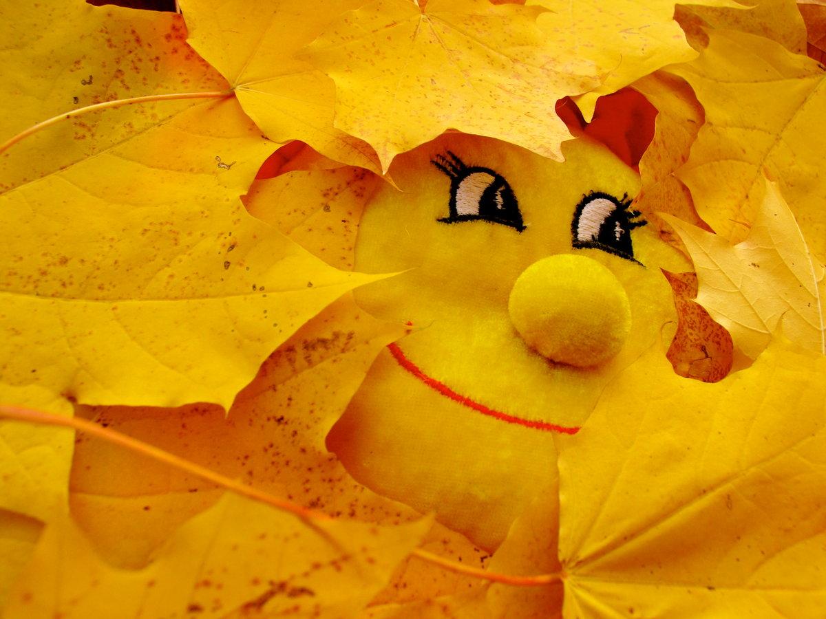 Осень солнце картинки с надписями