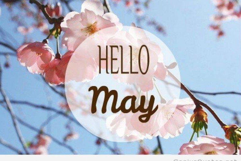 Открытки с мая на английском, фармацевта картинки