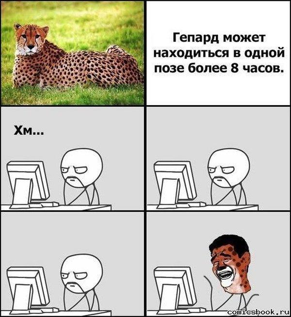Мемы приколы новые картинки