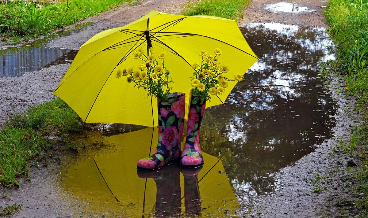 Лето дождь зонт картинки