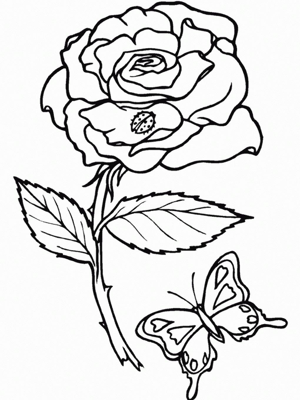Раскраски цветы распечатать формат а4 для девочек, почту отправить