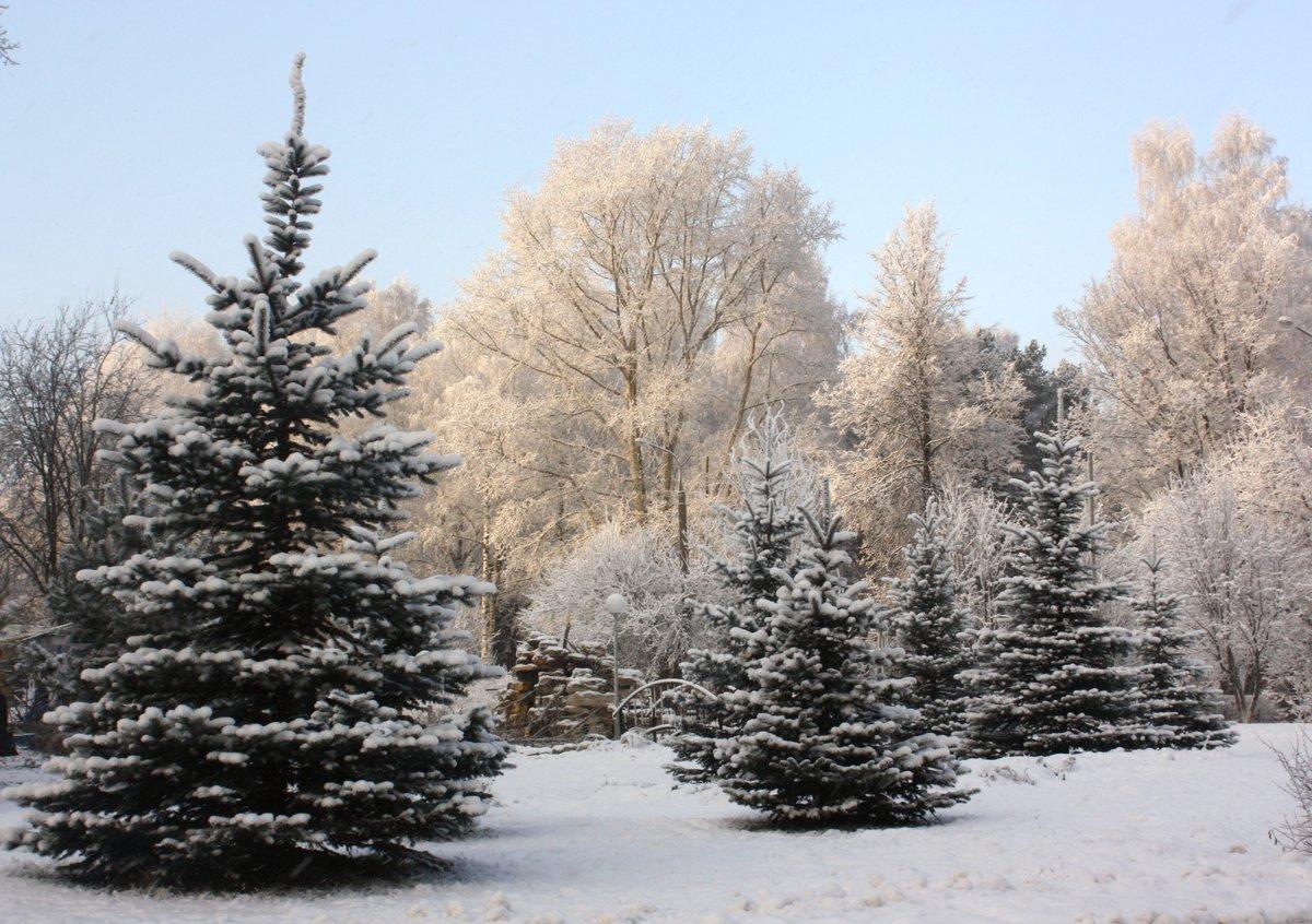 смотреть фото зимних открыток музыкальное видео