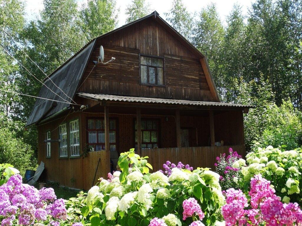 Фото дачного домика в деревне