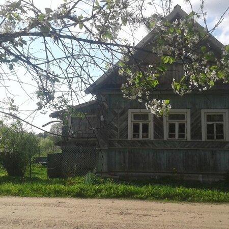 залучье новгородская область фото судя кадрам, погода