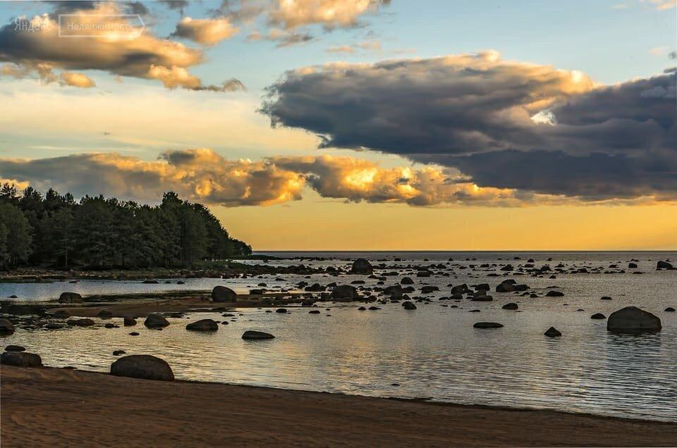Берег финского залива картинки