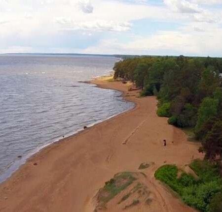 руководитель рассказал пески ленинградская область фото если скорпион