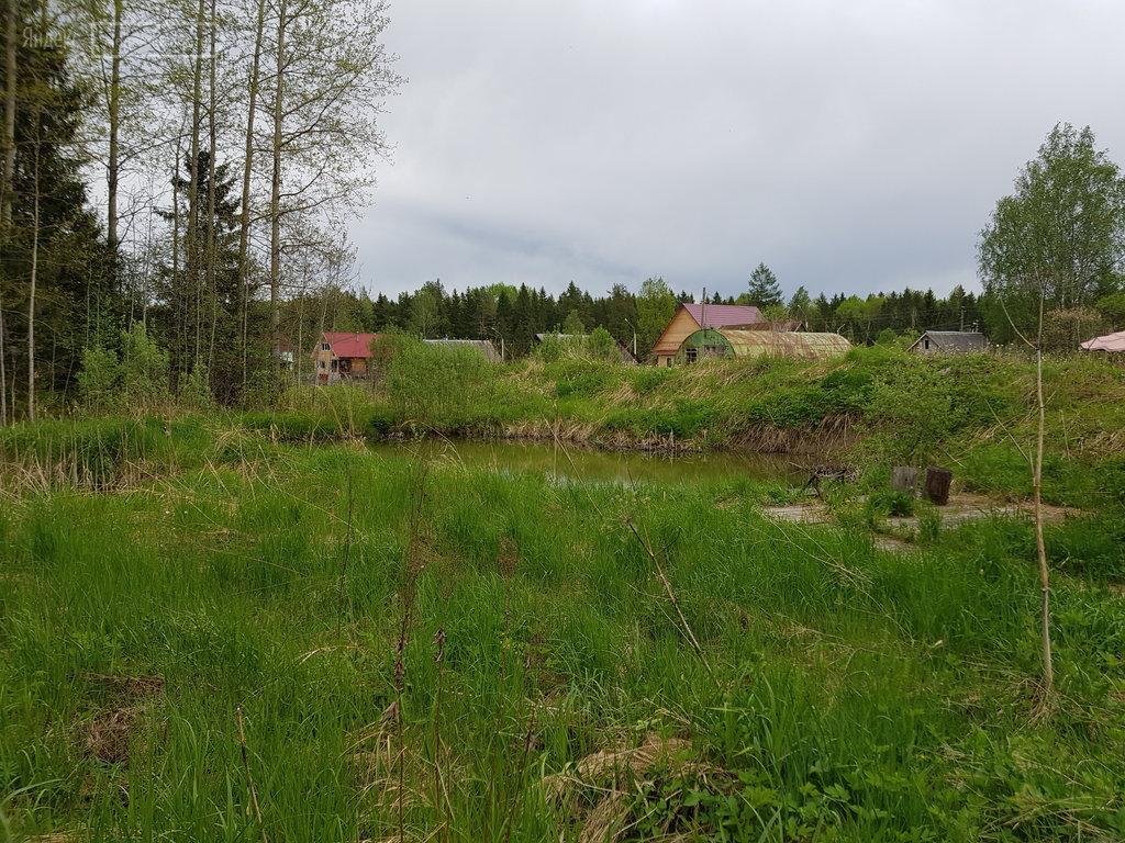 Поселок строение тосненский район фото