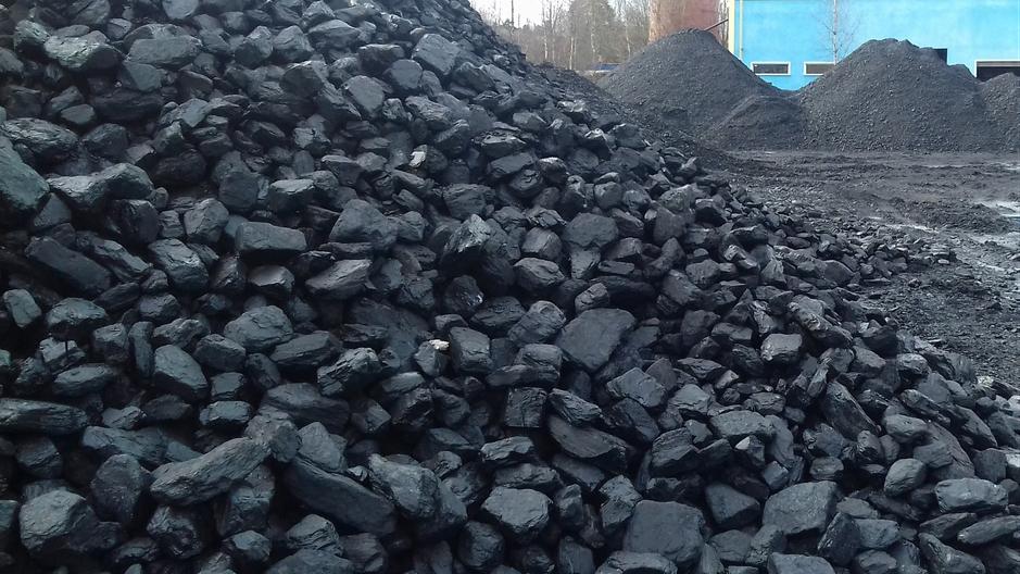 Уголь марки Д (обогащенный концентрат)