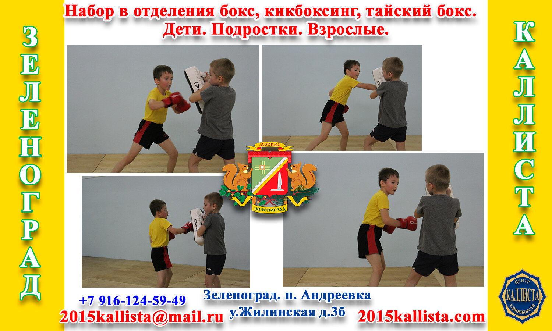 Зеленоград записаться на бокс, кикбоксинг, тайский бокс.