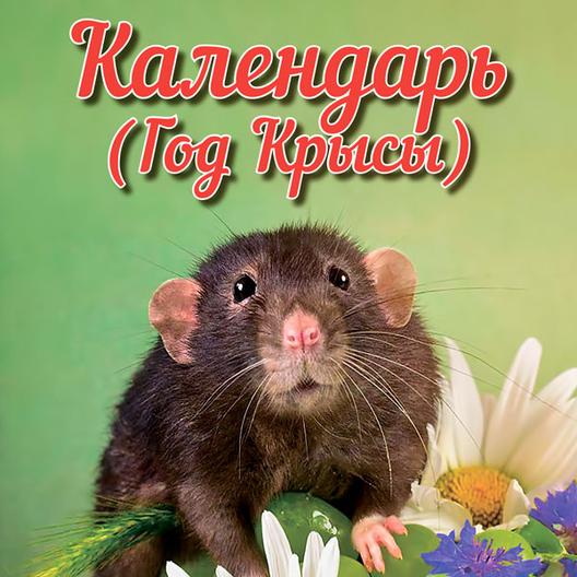 Календарь Год крысы 2020