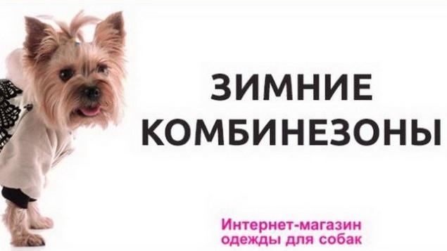 Распродажа зимних комбинезонов для мелких и средних пород собак со скидкой 30%.