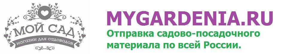 Интернет-магазин Мой Сад