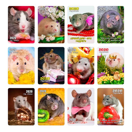 Символ года - Крысы