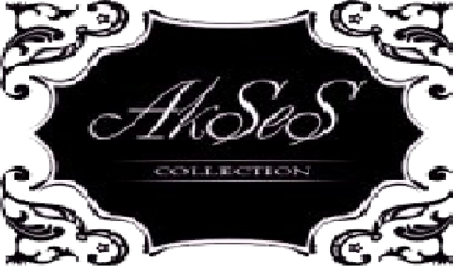 AkSeS  collektion