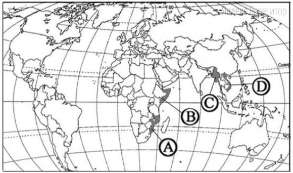 Какой буквой на карте мира обозначено государство Сомали?