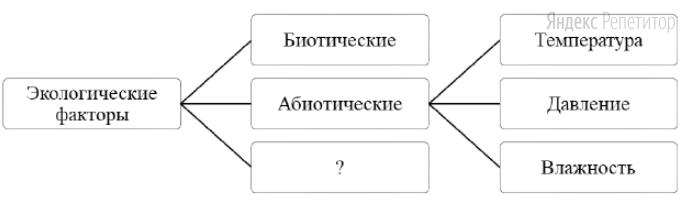 Рассмотрите предложенную схему классификации экологических факторов.