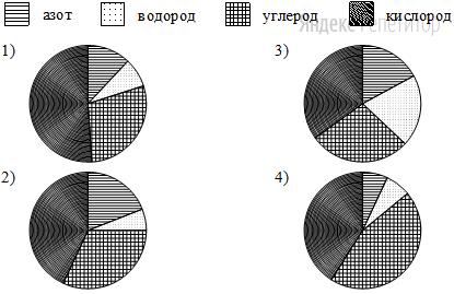 Какая из следующих круговых диаграмм показывает распределение масс элементов в молекуле глицина, если масса азота составляет примерно ... всей массы, водорода — примерно ..., углерода — примерно ... и кислорода — примерно ...?
