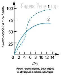 Проанализируйте график роста численности двух видов инфузорий, изображённый на рисунке.