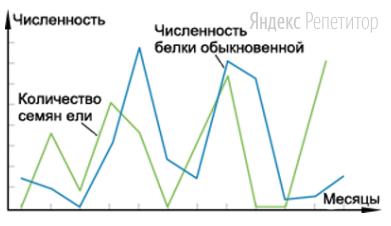 Проанализируйте график зависимости численности белок от количества семян ели (по оси ... — месяцы, по ... — численность (особей на гектар)).