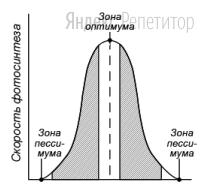 Проанализируйте график, отражающий зависимость скорости фотосинтеза у растения от интенсивности воздействующего фактора.