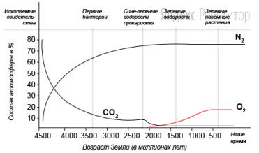Проанализируйте график, отражающий изменение газового состава атмосферы Земли с течением времени.