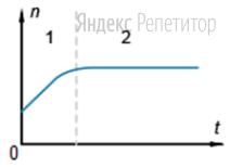 В пластиковый сосуд налили небольшое количество воды и закрыли крышкой. В конце процесса испарения на стенках осталось лишь несколько капель воды. На рисунке показан график зависимости концентрации n молекул водяного пара внутри сосуда от времени наблюдения.