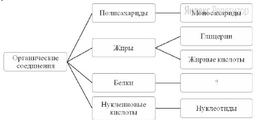 Рассмотрите предложенную схему классификации органических соединений.