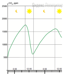 Проанализируйте график, отражающий концентрацию углекислого газа в герметичной ёмкости с растением в условиях искусственного освещения.