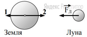 На рисунке приведены условные изображения Земли и Луны, а также вектор ... силы притяжения Луны Землей.