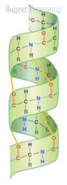 Рассмотрите рисунок с изображением схемы химического вещества.