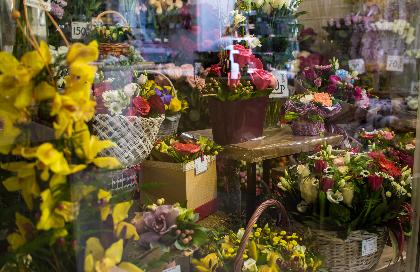 Цветы магазин для вас усть кинельский