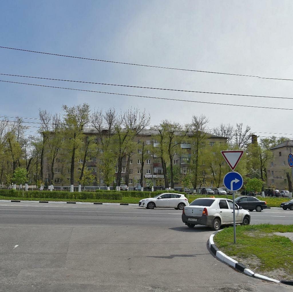 Болото на богданке город белгород фото растение, стебли