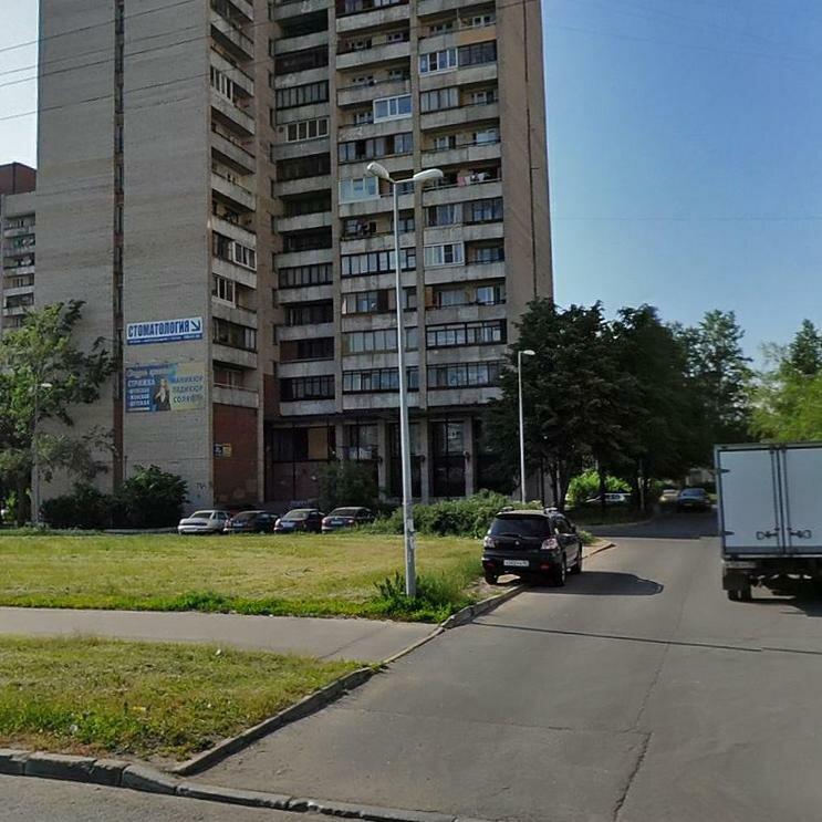 фото улицы будапештская спб можем настаивать