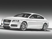 Обогрев сидений Audi S5 I поколение
