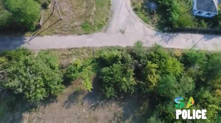 Кукурузный вор пытается убежать от дрона. Видео прикол