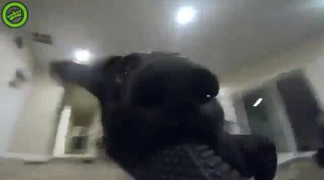 Пес схватил камеру и стал убегать от хозяина. Видео прикол