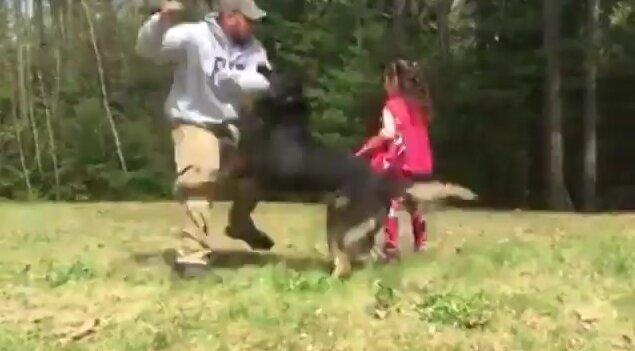 Тренировка собаки для защиты ребенка. Видео прикол