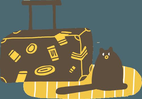 чемодан и кот