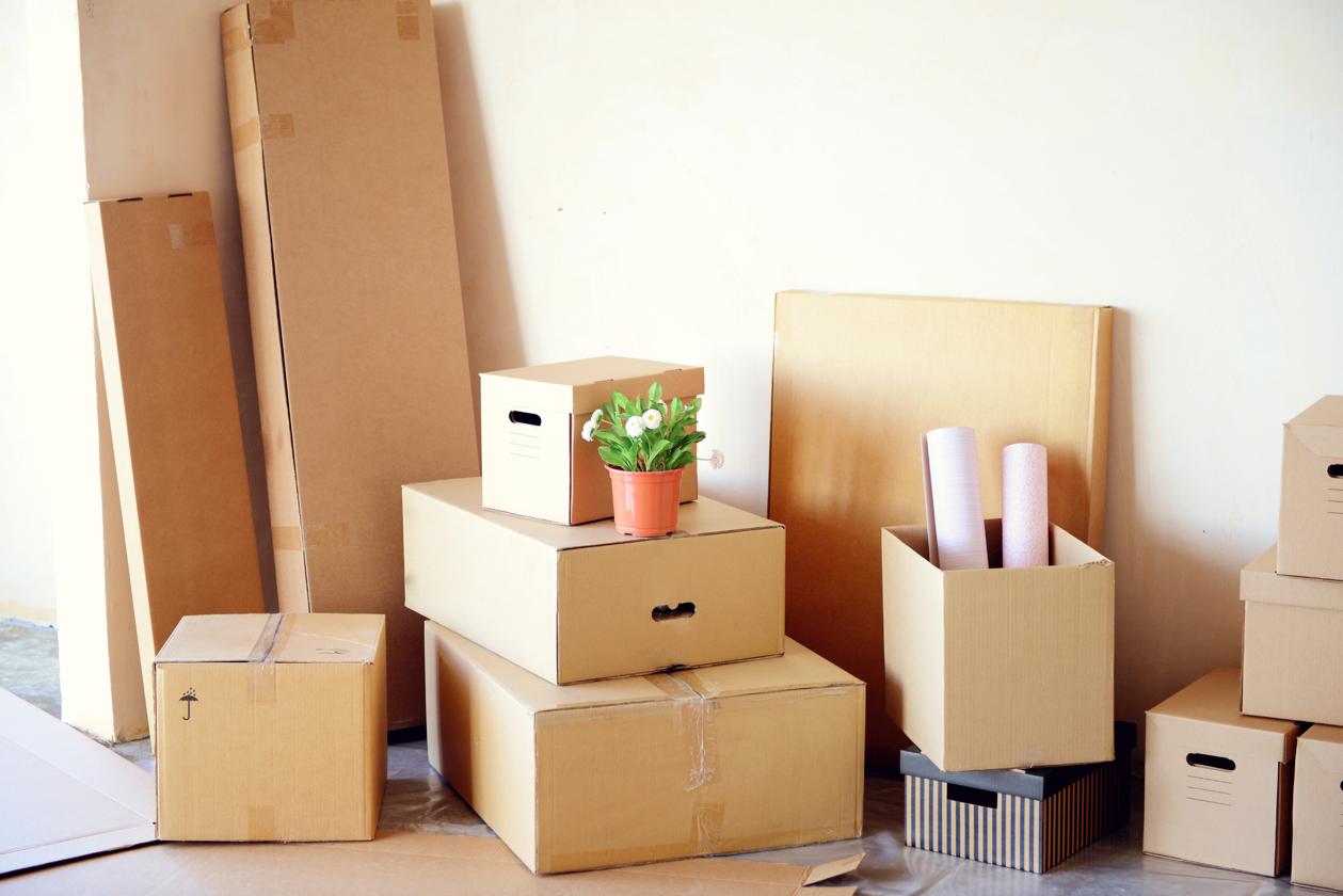 С чего начинать ремонт в получистовой квартиры