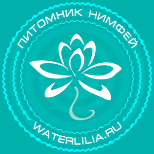 Статистика яндекс дзен Питомник нимфей Waterlilia.ru