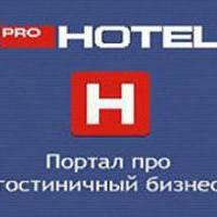 Статистика яндекс дзен ProHotel Official