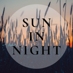 Статистика яндекс дзен suninnight