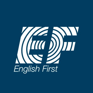 Статистика яндекс дзен English First Adults