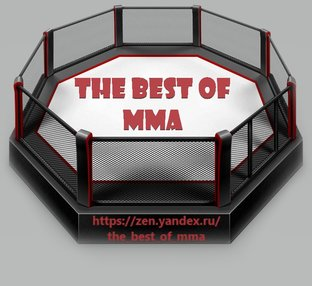 the BEST OF MMA