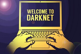 Статистика яндекс дзен DarkNetNews