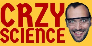 Статистика яндекс дзен CrazyScience